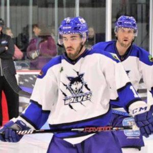 Hokejove rukavice pre hráčov