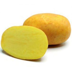 Ako sadiť zemiaky bez nástrojov